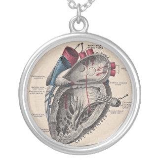 Vintage anatómico del diagrama del corazón colgante redondo
