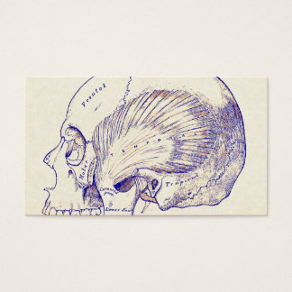 Vintage Anatomy Art Human Temporal Muscle Sepia Business Card