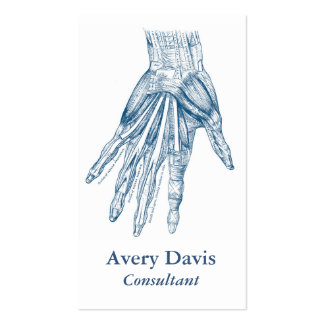 vintage anatomy art muscles of the hand blue business card anatomy office