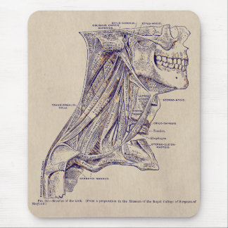 Vintage Anatomy Art Muscles of the Neck old paper Mouse Pad