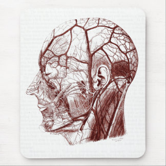 Vintage Anatomy Art Nerves of the Human Head Mouse Pad