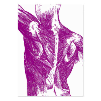 Vintage Anatomy | Back Muscles | Purple Large Business Card