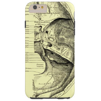 Vintage Anatomy | Base of the skull Inner surface Tough iPhone 6 Plus Case