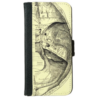 Vintage Anatomy | Base of the skull Inner surface iPhone 6/6s Wallet Case