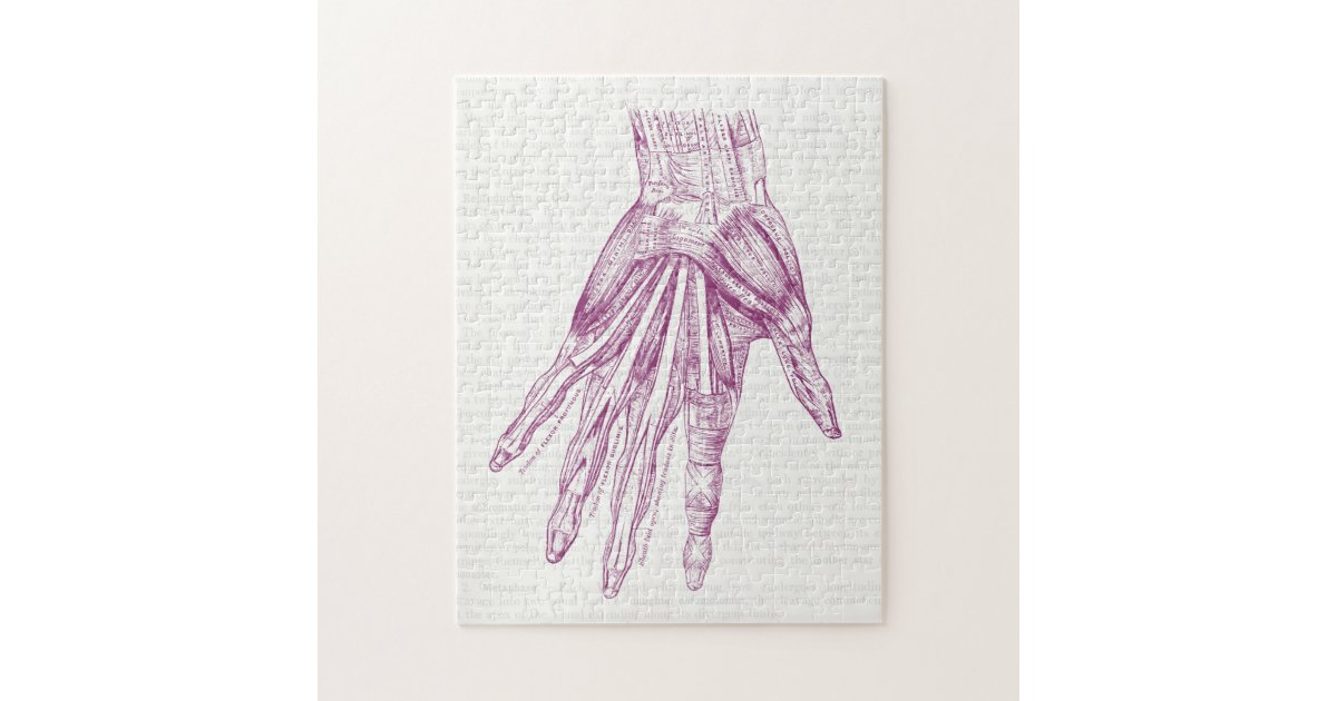 Vintage Anatomy Drawing Hand Muscles Purple Jigsaw Puzzle Zazzle