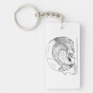Vintage Anatomy Drawing Human Temporal Muscle Double-Sided Rectangular Acrylic Keychain