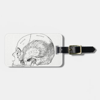 Vintage Anatomy Drawing Human Temporal Muscle Luggage Tag