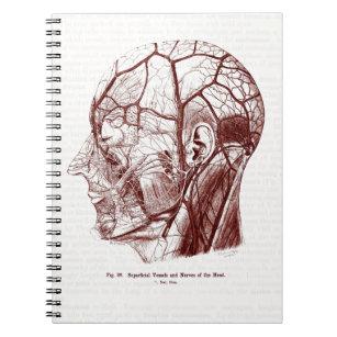 human anatomy notebooks journals zazzle