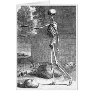 Vintage anatomy drawing, side view, skeleton greeting card