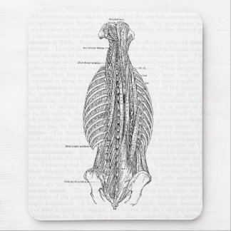 Vintage Anatomy Drawing The Back Mouse Pad