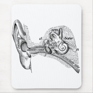 Vintage Anatomy Ear Drum Ear Canal Diagram Mouse Pad