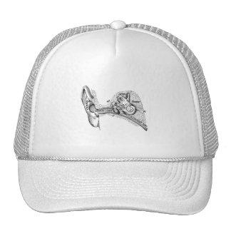 Vintage Anatomy Ear Drum Ear Canal Diagram Trucker Hat