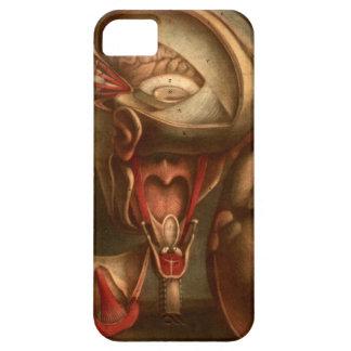 Vintage Anatomy | Head and Neck iPhone SE/5/5s Case