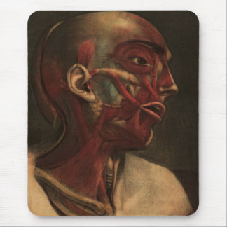 Vintage Anatomy | Head, Neck, and Shoulders Mouse Pad