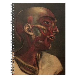 Vintage Anatomy   Head, Neck, and Shoulders Spiral Notebook