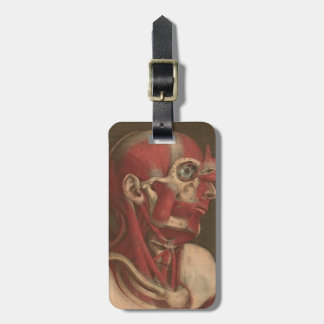 Vintage Anatomy | Head, Neck, and Shoulders Tag For Luggage