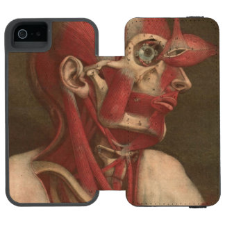 Vintage Anatomy | Head, Neck, and Shoulders Wallet Case For iPhone SE/5/5s