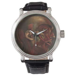 Vintage Anatomy | Head, Neck, and Shoulders Watches