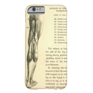Vintage Anatomy | Leg Muscles Barely There iPhone 6 Case