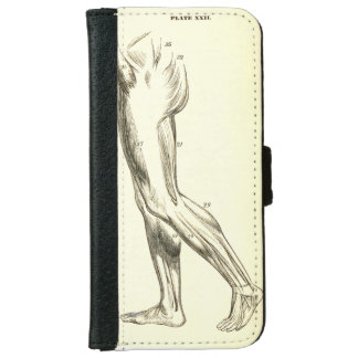 Vintage Anatomy | Leg Muscles II (ca. 1852) Wallet Phone Case For iPhone 6/6s