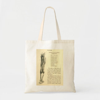 Vintage Anatomy | Leg Muscles Tote Bag