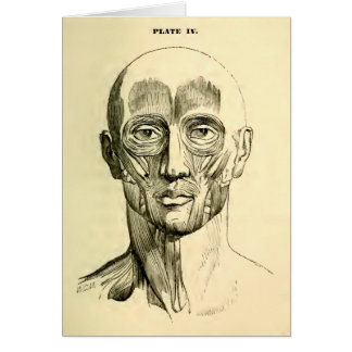Vintage Anatomy | Muscles of the Face (circa 1852) Greeting Cards