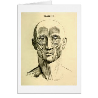 Vintage Anatomy | Muscles of the Face (circa 1852) Greeting Card