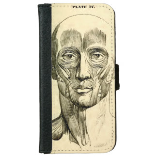 Vintage Anatomy | Muscles of the Face (circa 1852) iPhone 6/6s Wallet Case