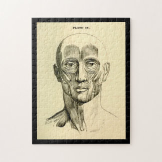 Vintage Anatomy | Muscles of the Face (circa 1852) Jigsaw Puzzle