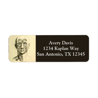 Vintage Anatomy   Muscles of the Face (circa 1852) Return Address Label