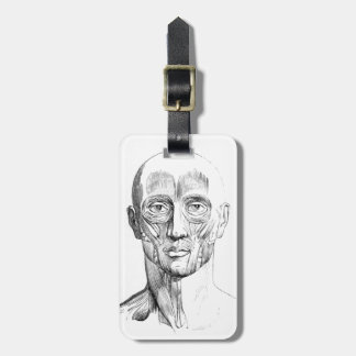 Vintage Anatomy | Muscles of the Face (circa 1852) Luggage Tag