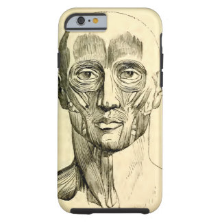 Vintage Anatomy | Muscles of the Face (circa 1852) Tough iPhone 6 Case