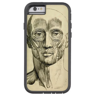Vintage Anatomy | Muscles of the Face (circa 1852) Tough Xtreme iPhone 6 Case