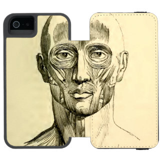 Vintage Anatomy | Muscles of the Face (circa 1852) Wallet Case For iPhone SE/5/5s