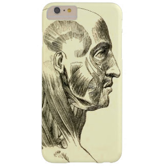 Vintage Anatomy | Muscles of the Head (circa 1852) Barely There iPhone 6 Plus Case