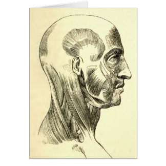 Vintage Anatomy | Muscles of the Head (circa 1852) Greeting Card