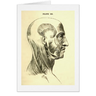 Vintage Anatomy | Muscles of the Head (circa 1852) Card