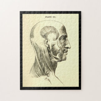 Vintage Anatomy | Muscles of the Head (circa 1852) Jigsaw Puzzle