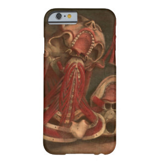 Vintage Anatomy | Neck and Face Barely There iPhone 6 Case