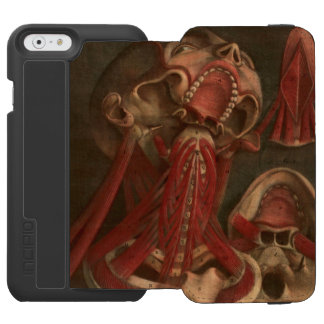 Vintage Anatomy | Neck and Face iPhone 6/6s Wallet Case
