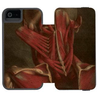 Vintage Anatomy | Neck and Shoulders iPhone SE/5/5s Wallet Case