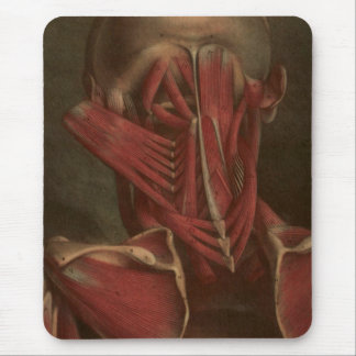 Vintage Anatomy | Neck and Shoulders Mouse Pad