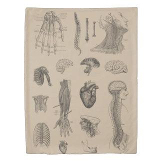 Vintage Anatomy Print Duvet Cover