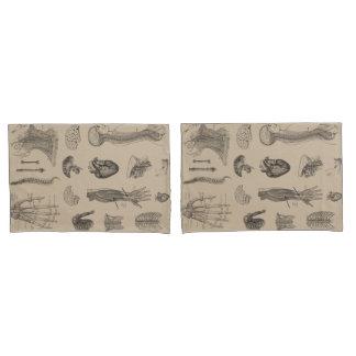 Vintage Anatomy Print Pillow Case