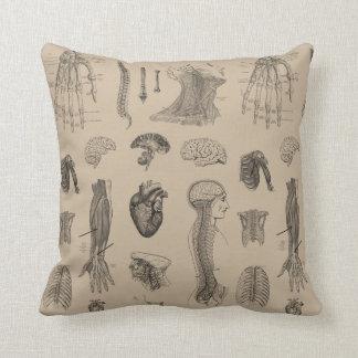 Vintage Anatomy Print Throw Pillow
