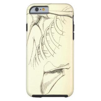 Vintage Anatomy | Scapula (circa 1852) Tough iPhone 6 Case