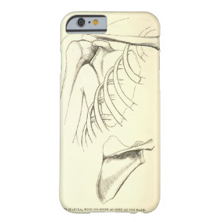 Vintage Anatomy | Scapula (circa 1852) Barely There iPhone 6 Case