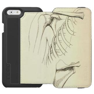 Vintage Anatomy | Scapula (circa 1852) iPhone 6/6s Wallet Case
