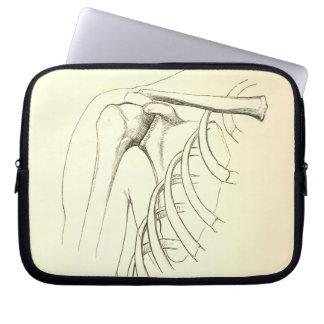 Vintage Anatomy | Scapula (circa 1852) Laptop Sleeves