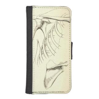 Vintage Anatomy | Scapula (circa 1852) Phone Wallet